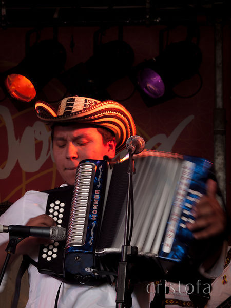 José Hernando Arias Noguera plays Columbian vallenato at WOMAD