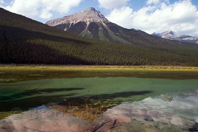 Reflections in unknown lake, Jasper NP, Canadian Rockies