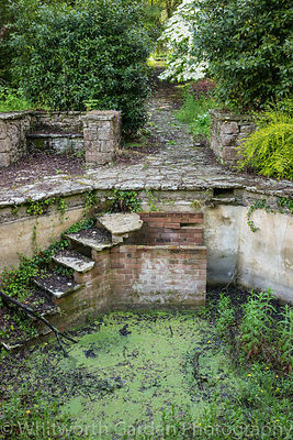 The Italian Garden at Great Ambrook. © Rob Whitworth