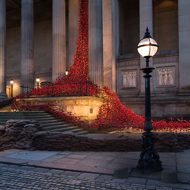 Poppies, St George's Hall