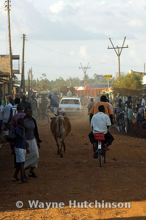 Boys on bikes with passenger riding along dusty road with pedestrians , Mumias , western Kenya Africa