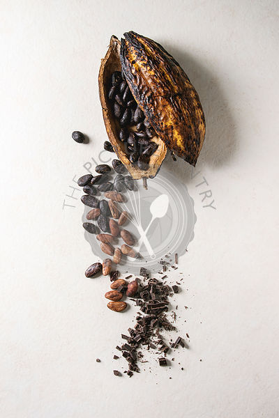 Variety of cocoa beans