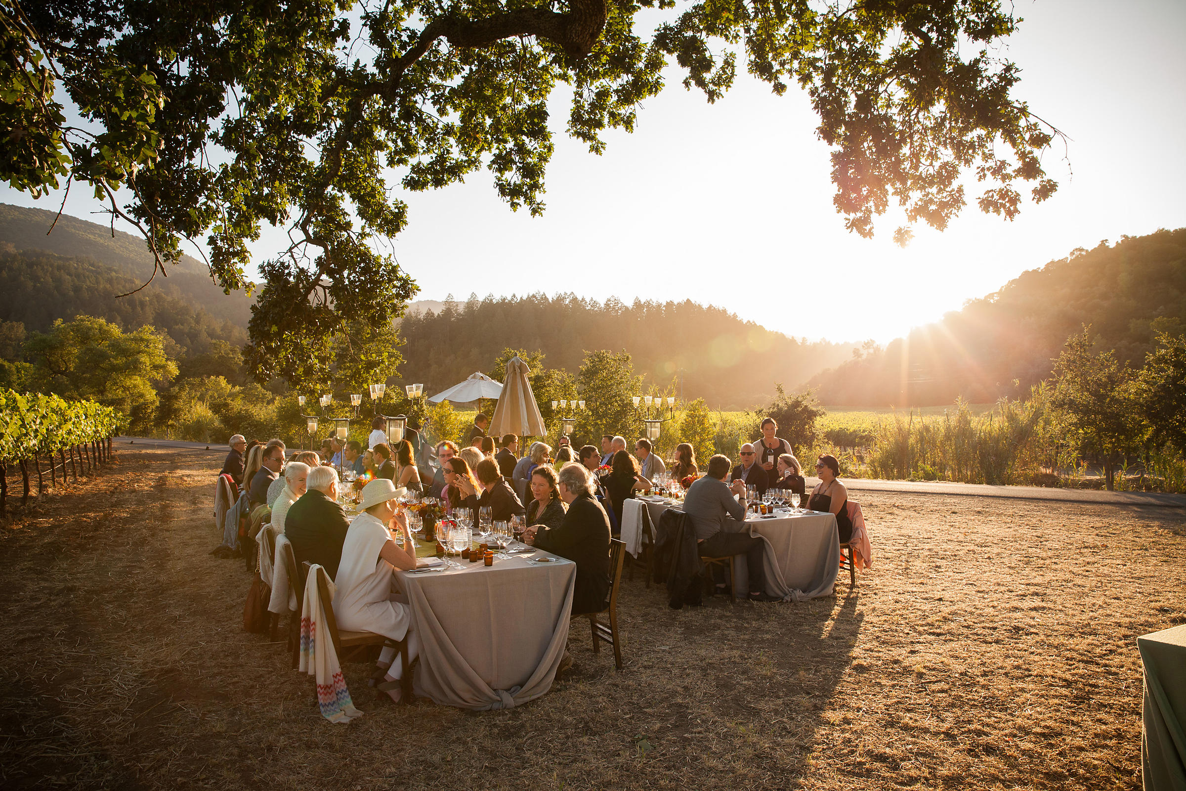 "Dining al fresco among the vines and setting sun at Inglenook's private party. Photo by <a href=""http://www.tinacciphoto.com""..."