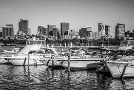Boston Skyline Black and White Picture