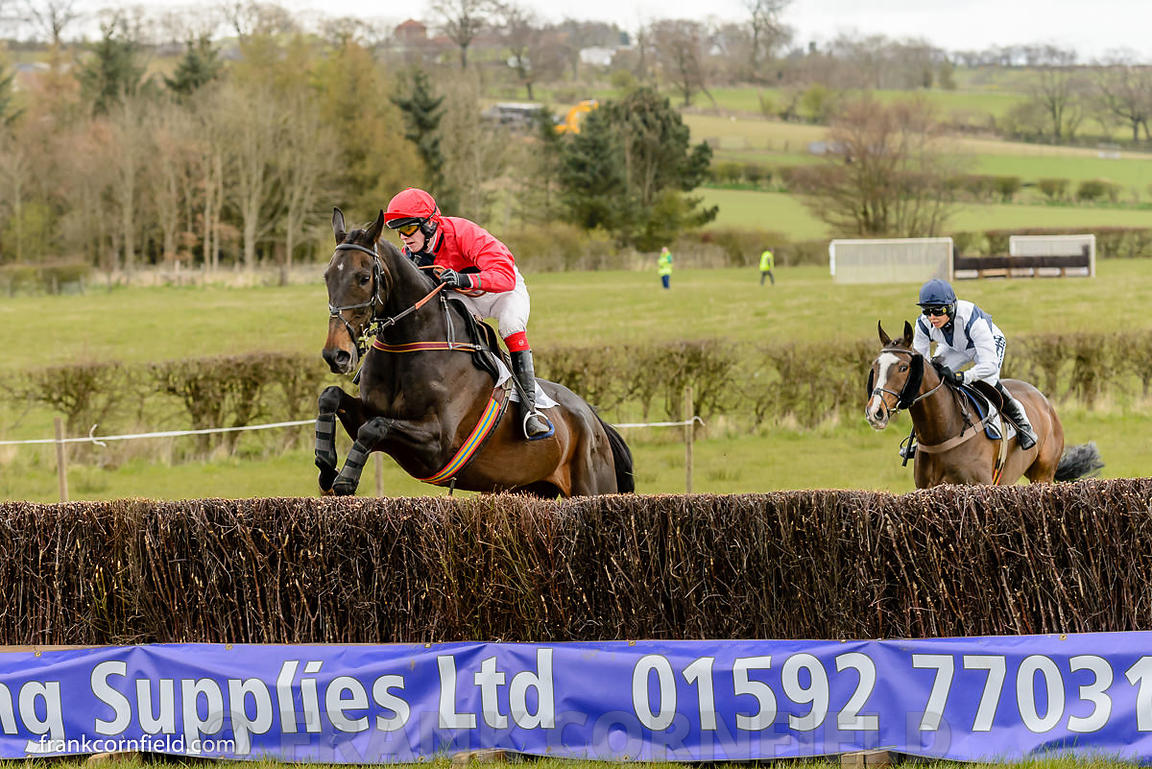 Badger Foot, Milano Magic, Balcormo Point-to-Point on 23 Apr 2016.