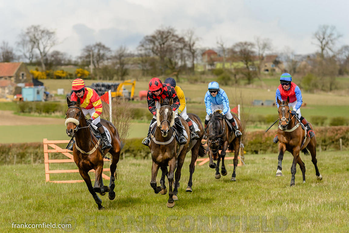 The Pentland Rover Mens Open Race at Balcormo Point-to-Point on 23 Apr 2016.