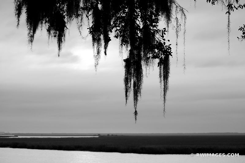 BRICKHILL RIVER CUMBERLAND ISLAND GEORGIA BLACK AND WHITE