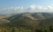 Nature of Palestine - Landscapes