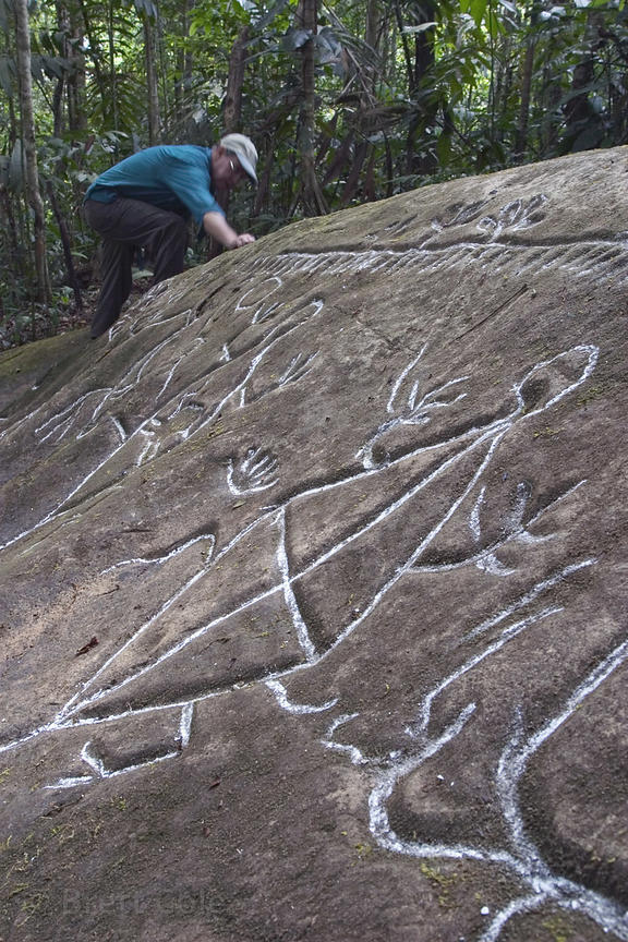 Close-up of ancient petroglyphs on the Los Cusingos Reserve, Costa Rica, highlighted with chalk to show the extent of the dra...