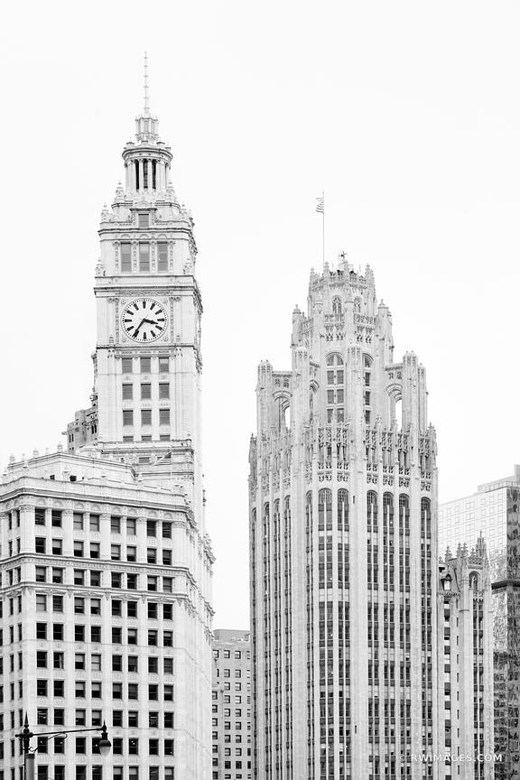 WRIGLEY BUILDING TRIBUNE TOWER CHICAGO ILLINOIS BLACK AND WHITE VERTICAL