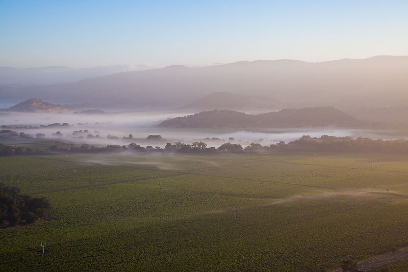 Aerial photo of Napa Valley in the morning with wispy clouds from a hot air balloon.