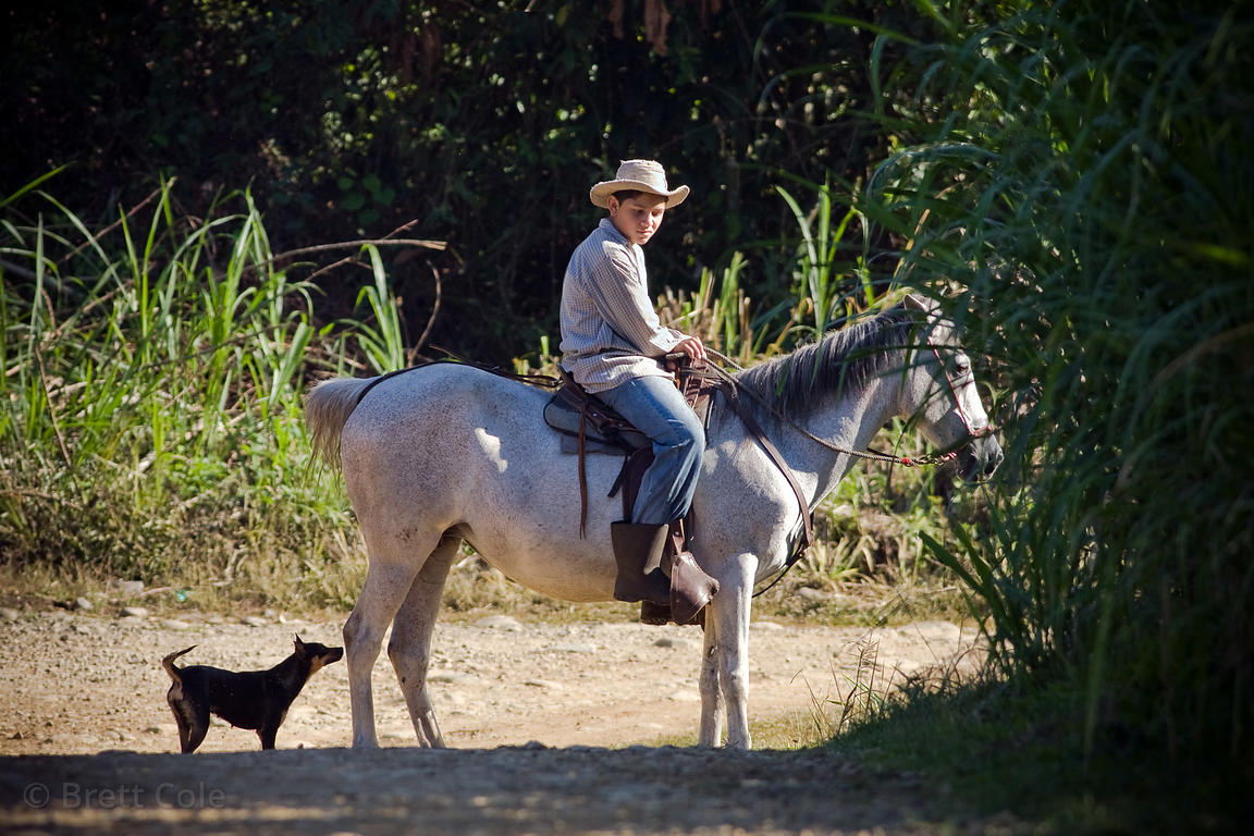 Man's two best friends, Quizarra, Costa Rica