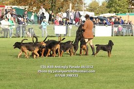 036_KSB_Ardingly_Parade_061012