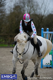 LMEQ Arena Eventing - 30th Jan 2015.