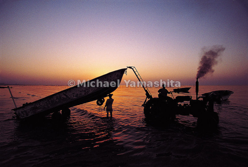 At dawn the fishing boats are dragged into the water.