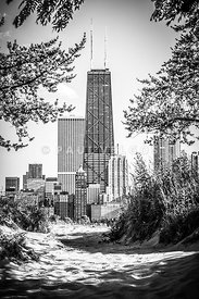 Hancock Building Through Trees Black and White Photo