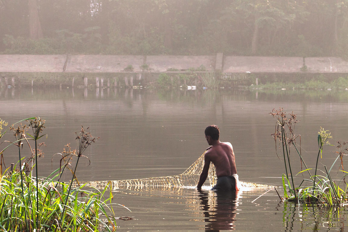 A fisherman gathers up a net in a small lake on the Maidan, a large park in central Kolkata, India.