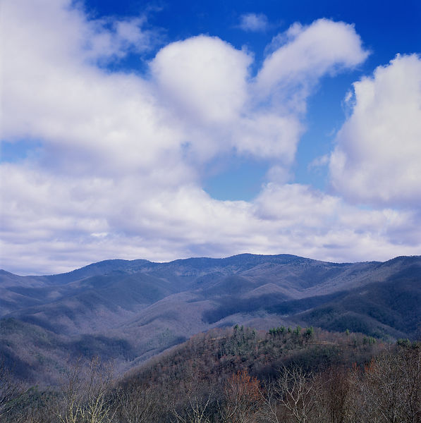 046-Blue_Ridge_D145219_Blue_Ridge_In_Early_Spring_044_Preview