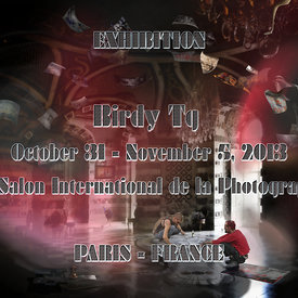 Birdy Tg on Exhibition: PARIS October 31 - November 5, 2013