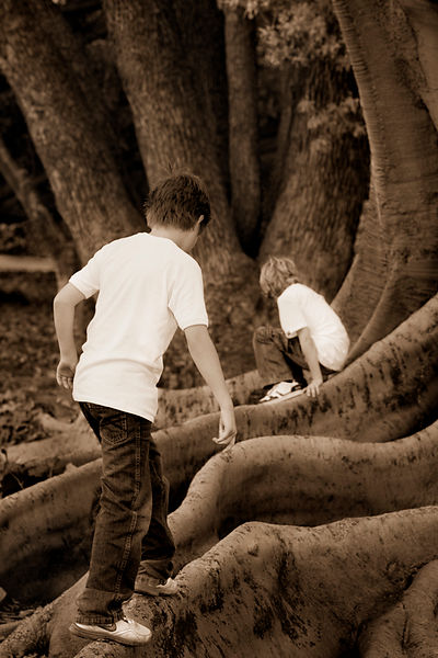 brothers_photograph_in_park_playing_c
