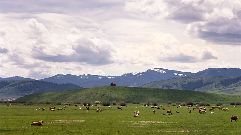 Rockies_D126001_Wyoming_Ranch_Web
