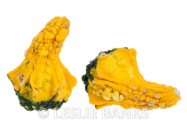 Yellow and green gourd