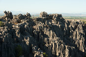 Tourist overlooking the tsingy of the Ankarana massif, Madagascar