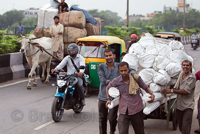The diversity of transportation in India. An auto-ricksahw, ox cart, motorcycle, and hand-pulled cart share the road near the...