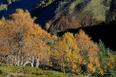 photos of mountain landscapes in France in the Pyrenees