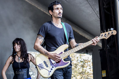The Last Internationale, Aftershock 2014