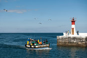 Fishing boat entering the harbour, Kalk Bay, False Bay, South Africa