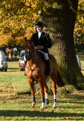 William Grant at the meet. The Belvoir Hunt at the Kennels 13/11