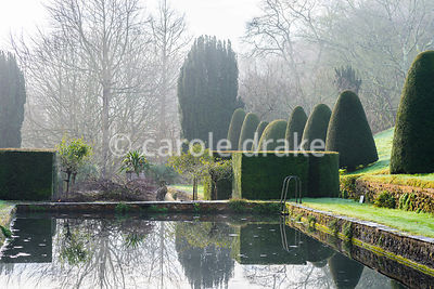 Swimming pool in the Canal Garden framed by clipped yews, standard roses and sstone cranes. Mapperton, Dorset