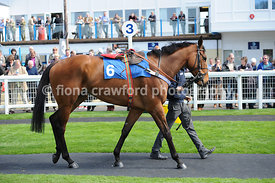 The SIS Virtual Betting Channel Novices Handicap Hurdle Race (Class 4)