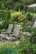 Seating area surrounded by aromatic and edible plants such as rosemary, squashes and tomatoes. The Shute, nr Ventnor, Isle of...