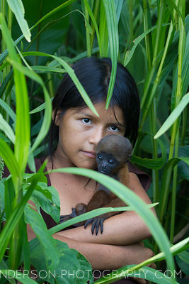 The mother of this Woolley monkey was killed by a poisoned dart and eaten. Most pets of Amazonian tribes were once orphaned, ...