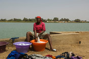 Woman washing clothes in the Senegal river, Dagana, Senegal