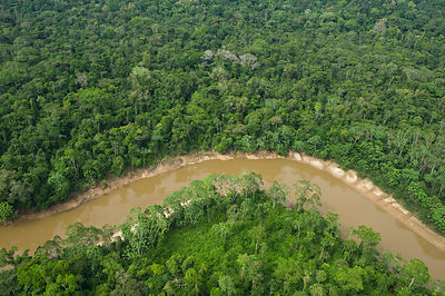 Aerial view of Tiputini River and surrounding rainforest. Yasuni National Park, Amazon Rainforest, Ecuador, South America
