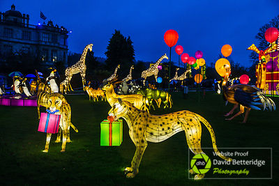 Longleat_Festival_of_Light-27