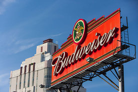 Budweiser: Hollywood California
