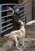A young boy with a Cottesmore foxhound