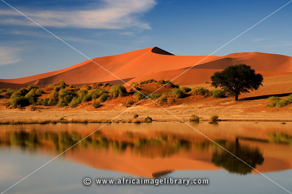 Sossusvlei filled with water after exceptional rains in 2006, Namib-Naukluft National Park, Namibia