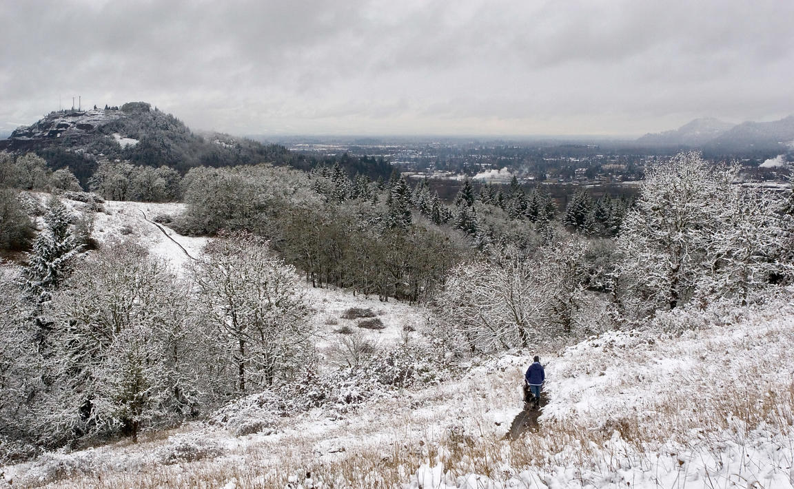 View of snow on the Willamette Valley near Eugene, Oregon, from the flanks of Mount Pisgah