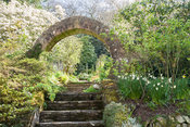 Circular brick built entrance into the kitchen garden at the top of steps leading up from the lawn, with magnolia flowering b...