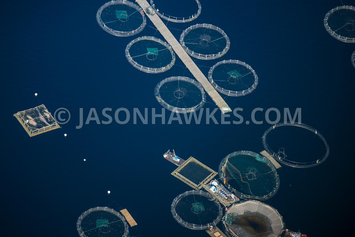 Aerial view of fish farms in Loch Awe, Scotland