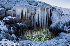 Icicles formed from Spray off Waves along Lake Michigan in Rosy Mound Natural Area