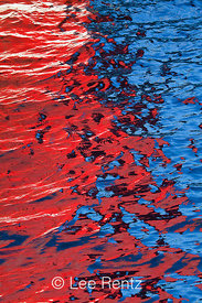 WATER COLOR 36: Red Waves
