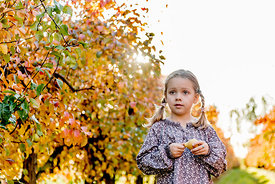 Younger Nordic girl and pear trees 4