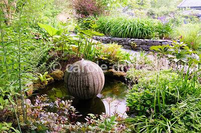 A cast concrete spherical water feature sits in a pond surrounded by moisture loving plants including astilbes, saxifrages, r...