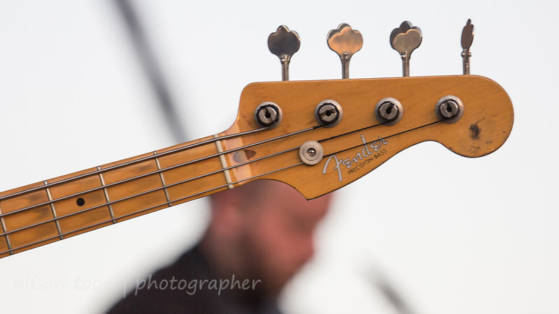 Fender bass, The War on Drugs, TBD Fest, 2014